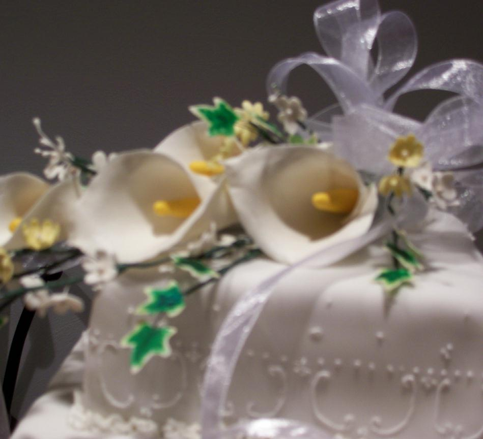 Wedding Cakes And Special Occasion Cakes Roanoke Va Cake Decorator